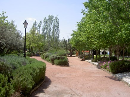 - - - - ARBORICULTURA URBANA / URBAN ARBORICULTURE - - - -: DEFINITION OF GREEN AREA