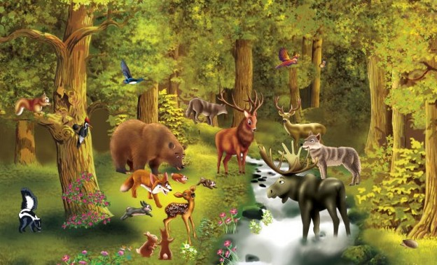 GC5T2BQ Forest Animals (Traditional Cache) in New Jersey United States created by GSWA
